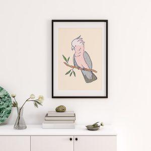 Galah Australian Birds Art Print